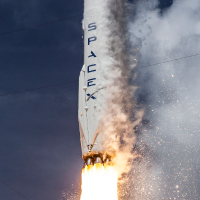 SpaceX Company Logo