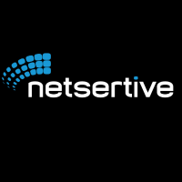 Netsertive Company Logo