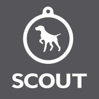 Scout Marketing Company Logo