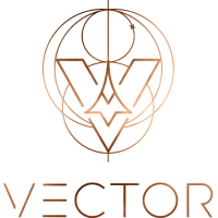 Vector Space Systems Company Logo
