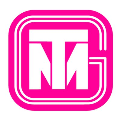Transmarket Group Company Logo