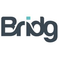 Bridg Company Logo
