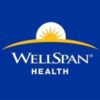 WellSpan Health Company Logo