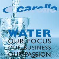 Carollo Engineers Company Logo